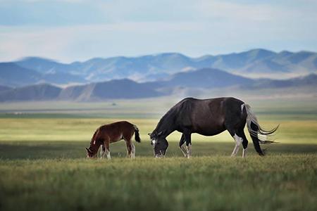 transsiberien-russie-mongolie-chine-big