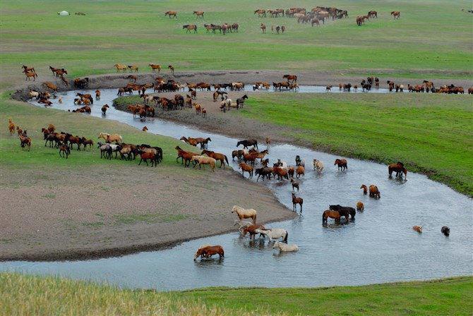 Mongolie centrale, randonnée