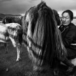 Extension « Séjour chez les nomades » – 7 Jours