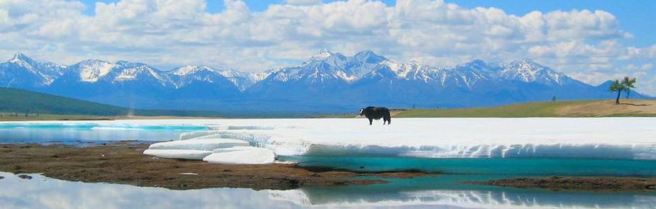 Chez les nomades du lac Khuvsugul