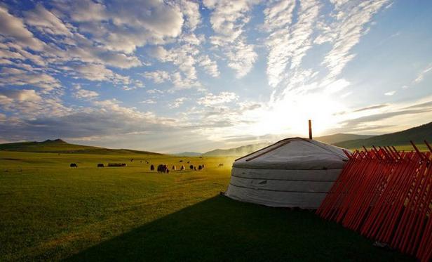 Grand tour de la Mongolie du sud au nord
