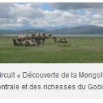 VOYAGE en 4×4 EN MONGOLIE