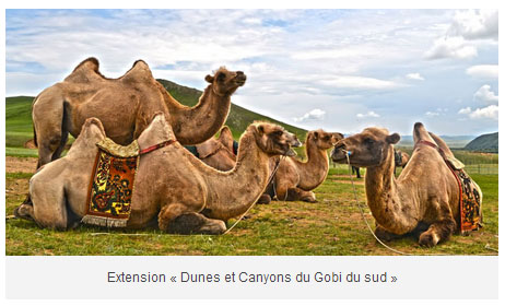 dunes et canyons du gobi4