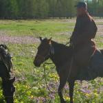 Khenti, pays sauvage, faune et flore de la Mongolie
