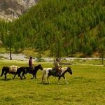 Circuit mixte chevauchee, randonnee pedestre et nomades