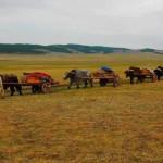 Sejour chez les nomades