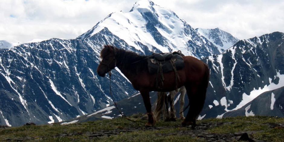 Trek Altai