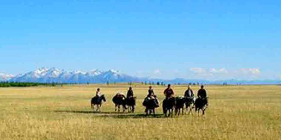 Randonnée dans UVS, Massifs du sud de la Sibérie mongole
