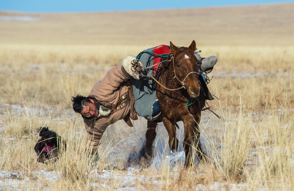 Cavaliers mongols lors d'un jeu 431208051914_o