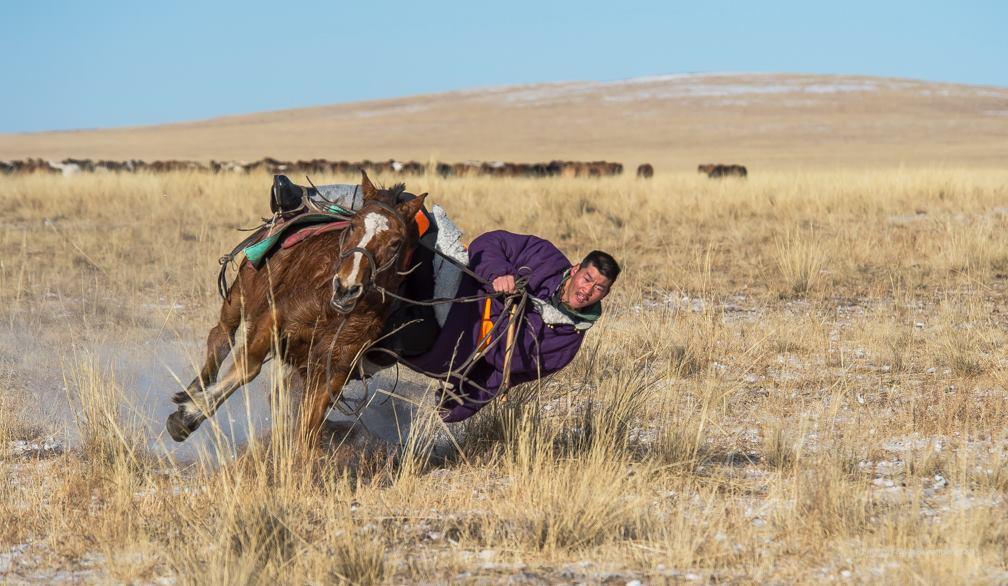 Cavalier mongol et Jeux d'osselet