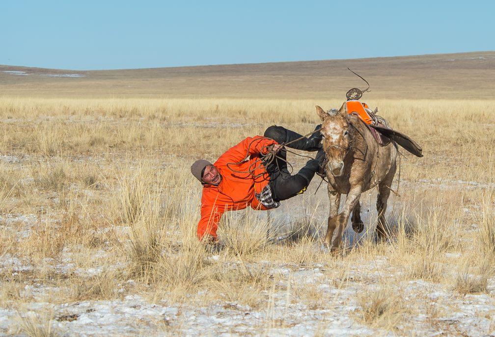 Cavaliers et jeux équestres mongols